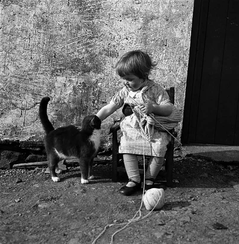 "In Shetland they start knitting early; Little Chrissie Cheyne is wearing a knitting belt. ""Girl with Cat"", J. Peterson, 1939-46, ©Shetland Museum, Lerwick, Shetland, #P03602"